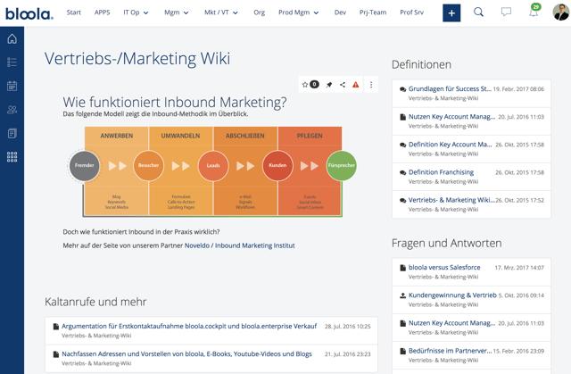 CMS + Wiki Seiten - de.png